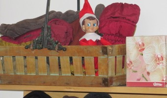 Elf on the Shelf: Day 8
