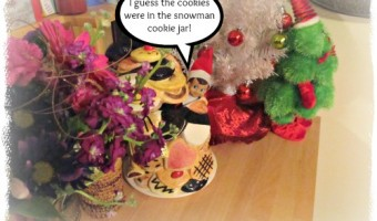 Elf on the Shelf 2012 – Day 26