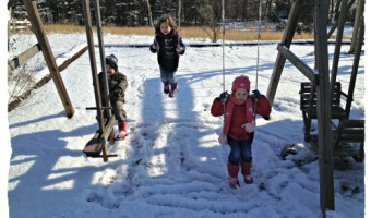 A Virginia Snow Day – January 2013