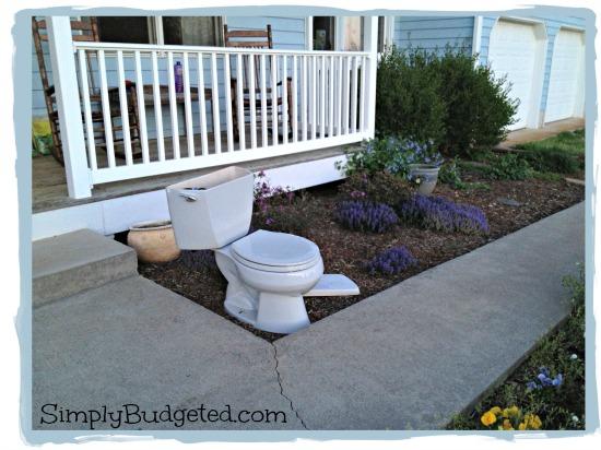 toilet-in-garden