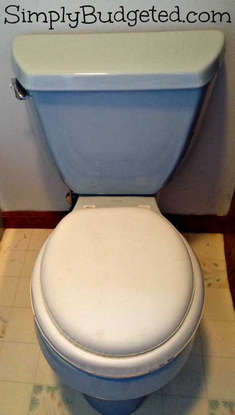 Old Blue Toilet