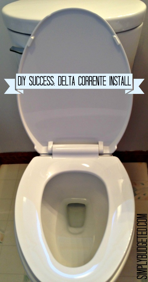 DIY New Toilet = Delta Corrente