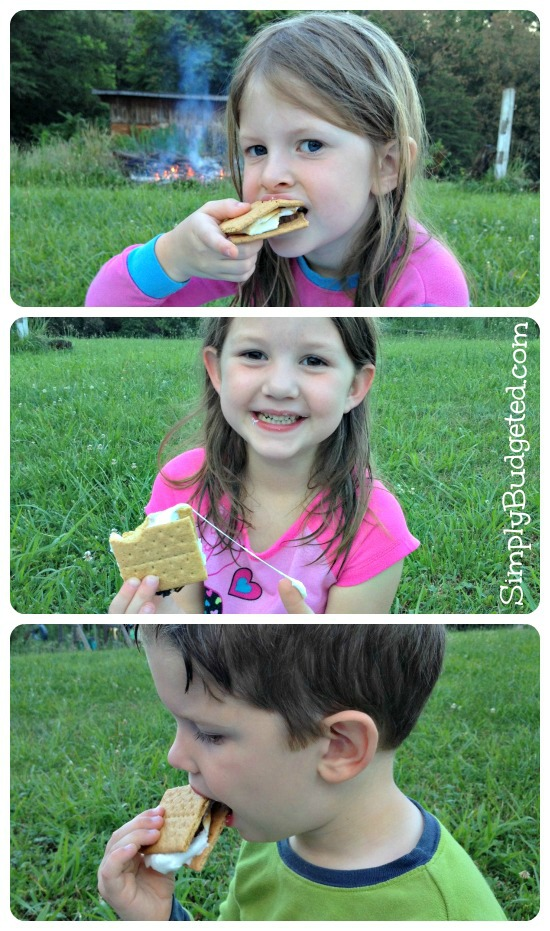 Backyard S'mores Collage
