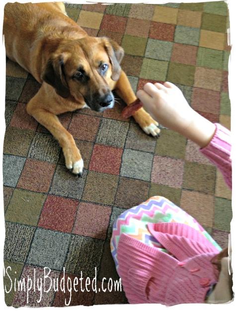 Grace giving Buddy a healthy dog treat