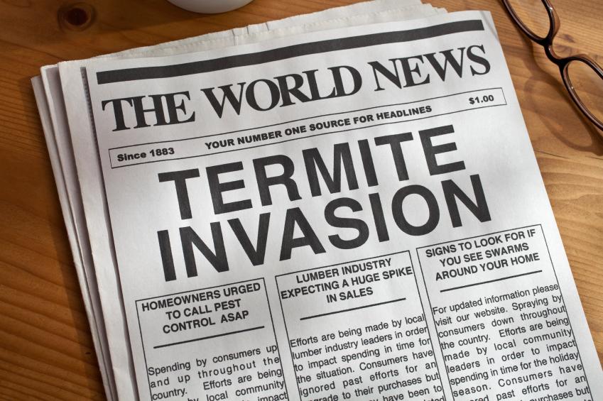 termite-invasion