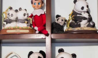 Elf on the Shelf: Day 13 Panda Friends