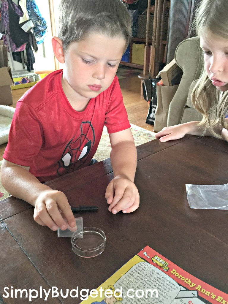 Young Scientist Club - Crystal Project water