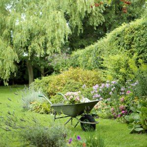garden-edge