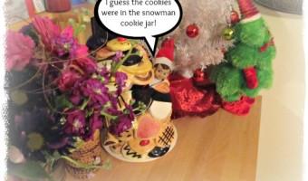 Elf on the Shelf 2012 – Day 26