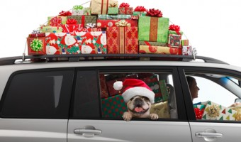 Holiday Travel Safety Tips from LifeLock