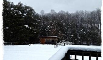 More March Snow in Virginia