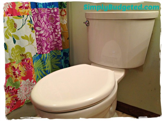American Standard Champion PRO Toilet Review