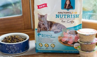Healthy Cat Food for our Purr-fect Family Members